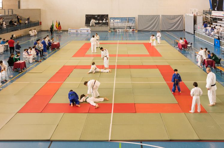 tatamis-judo-xx