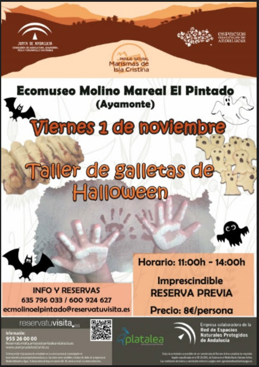 taller-galletas-halloween
